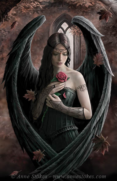 gothic_20100524_1579750114